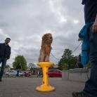 Hundhocker / Butcher Jam / Photo: Hannes Roth
