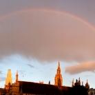 Rainbow / HockEurope / SALZIG Sporthocker / Foto: S. Wilke