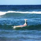 Johanna / Hock\'n\'Surf Australia